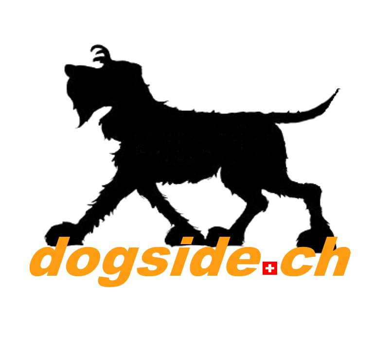 Shop Dogside