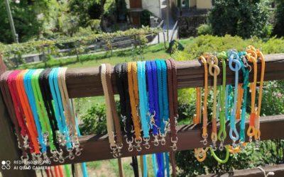 Ratgeber Hundehalsband und Hundeleine